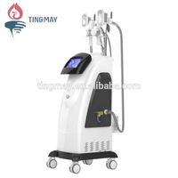 4 in 1 Vertical Cryolipolysis system/ vacuum cryotherapy fat freeze machine body slimming equipment