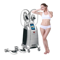 2019 China Manufacturer Price Fat Freeze Cryolipolisis Machine /Fat Freezing sliming cryolipolysis machine