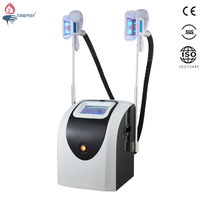 Best Effective Portable Painless Cryolipolysis / Fat Freezing Reduction Mini Slimming Equipment