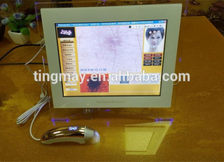 Intelligent LCD 3D facial skin analyzer