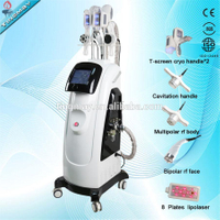 professional two cryo handles fat freeze Cryolipolyse, cryolipolysis machine for sale