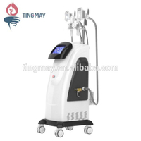 cryo lipo fat freeze cryotherapy cryolipolysis machine